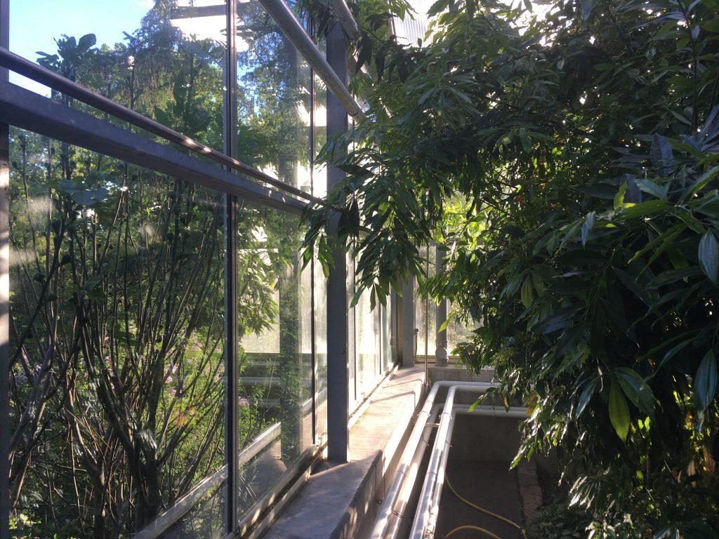 Botanischer Garten Halle | © Marcus Pape